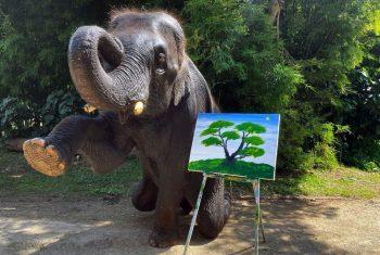 BitTrunks Elephant NFT